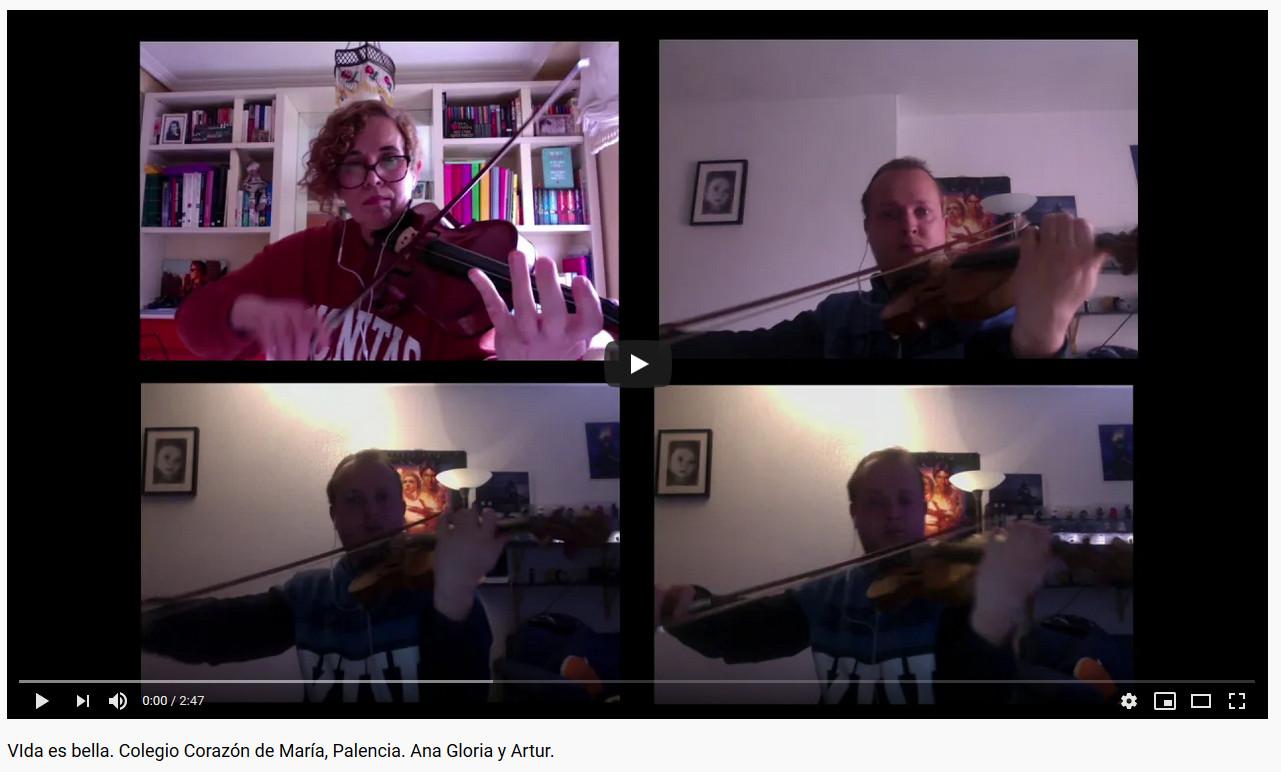 Video Profesores violin